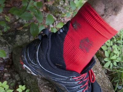 CEP Short Socks 5