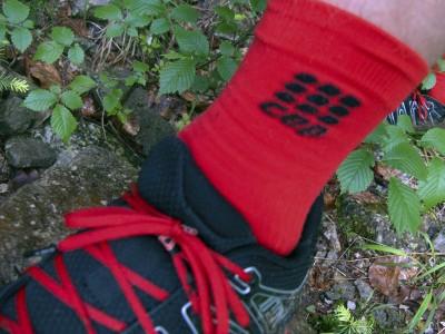 CEP Short Socks 6