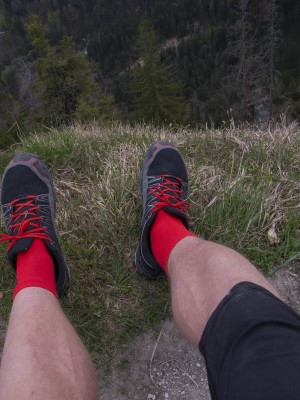 CEP Short Socks 8