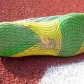 Merrell Vapor Glove 11