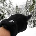 SealSkinz Ultra Grip Gloves 11